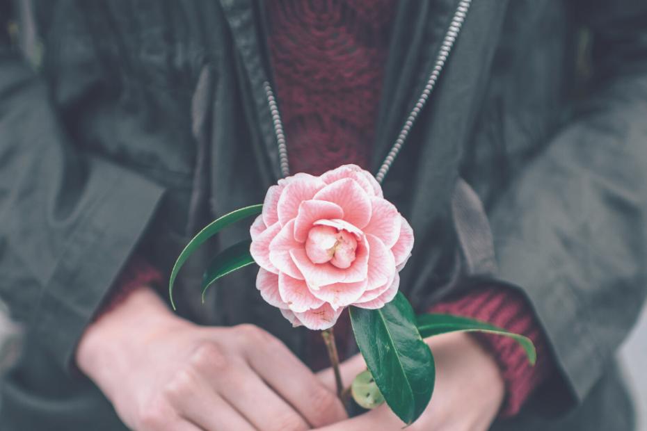 zona de confort terapia online para mujeres amateconlocura.es